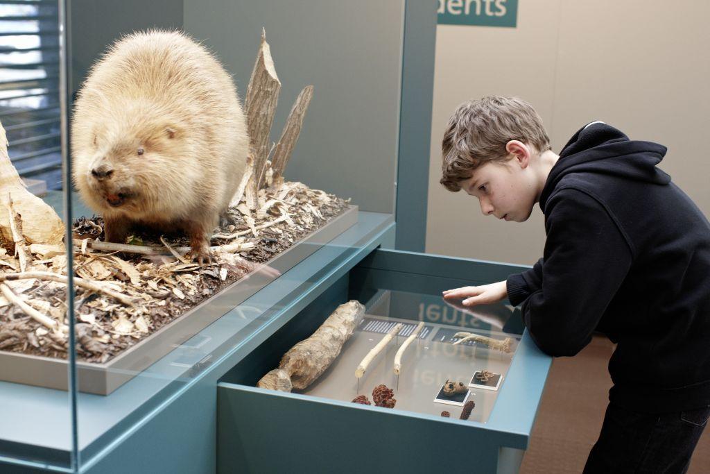Naturmuseum Chur